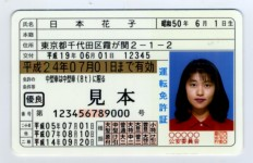 運転免許証 - 見本